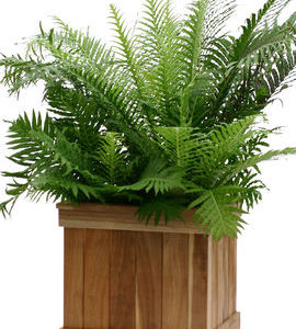 square-teak-tree-planter-box