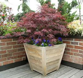 Teak Trapezoid Planter Box